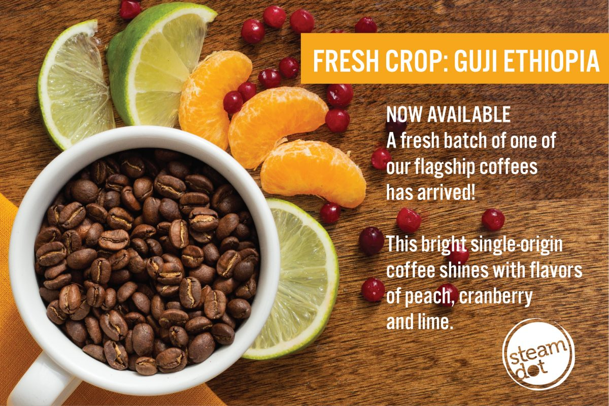 """Mug full of Guji coffee beans. Limes, tangerines, and cranberries lie around it. Text reads """"Fresh Crop Guji - Ethiopia"""" Now Available"""